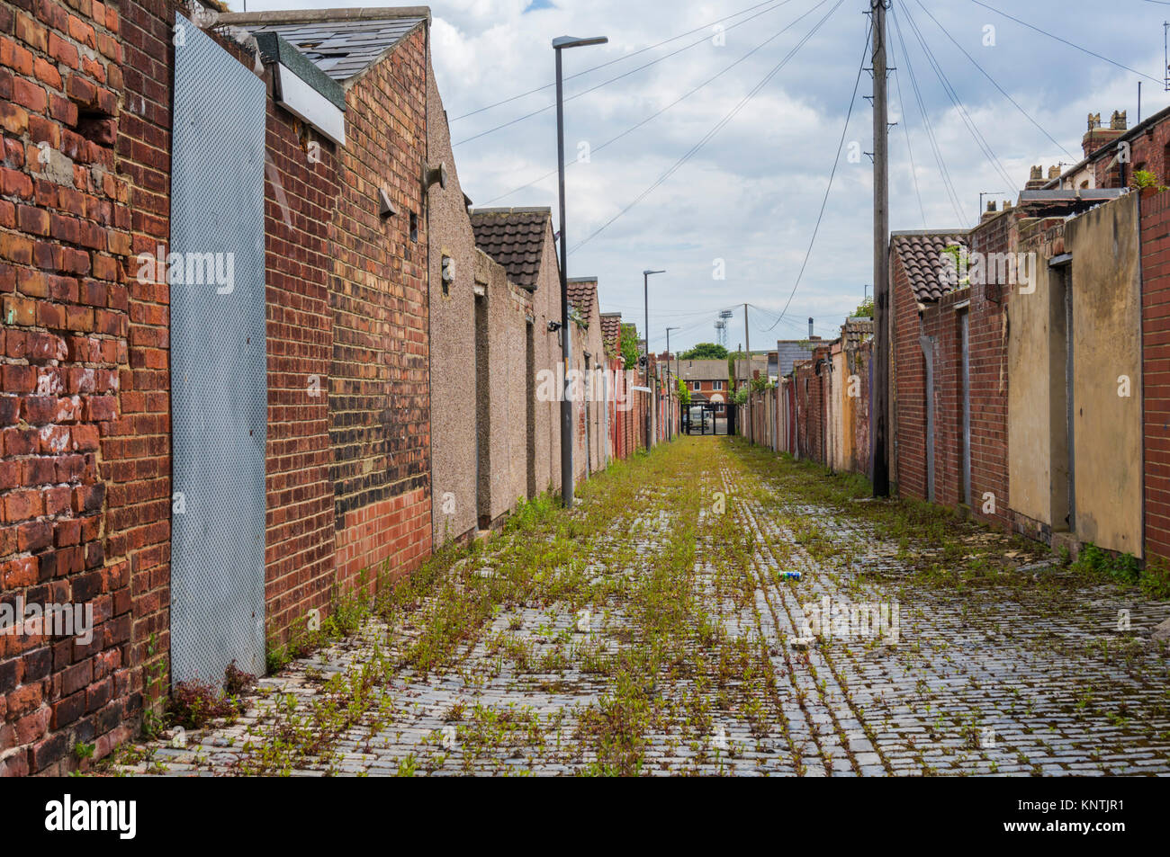 backs of derelict terraced houses England Hartlepool england abandoned houses ready for demolition or redevelopment - Stock Image
