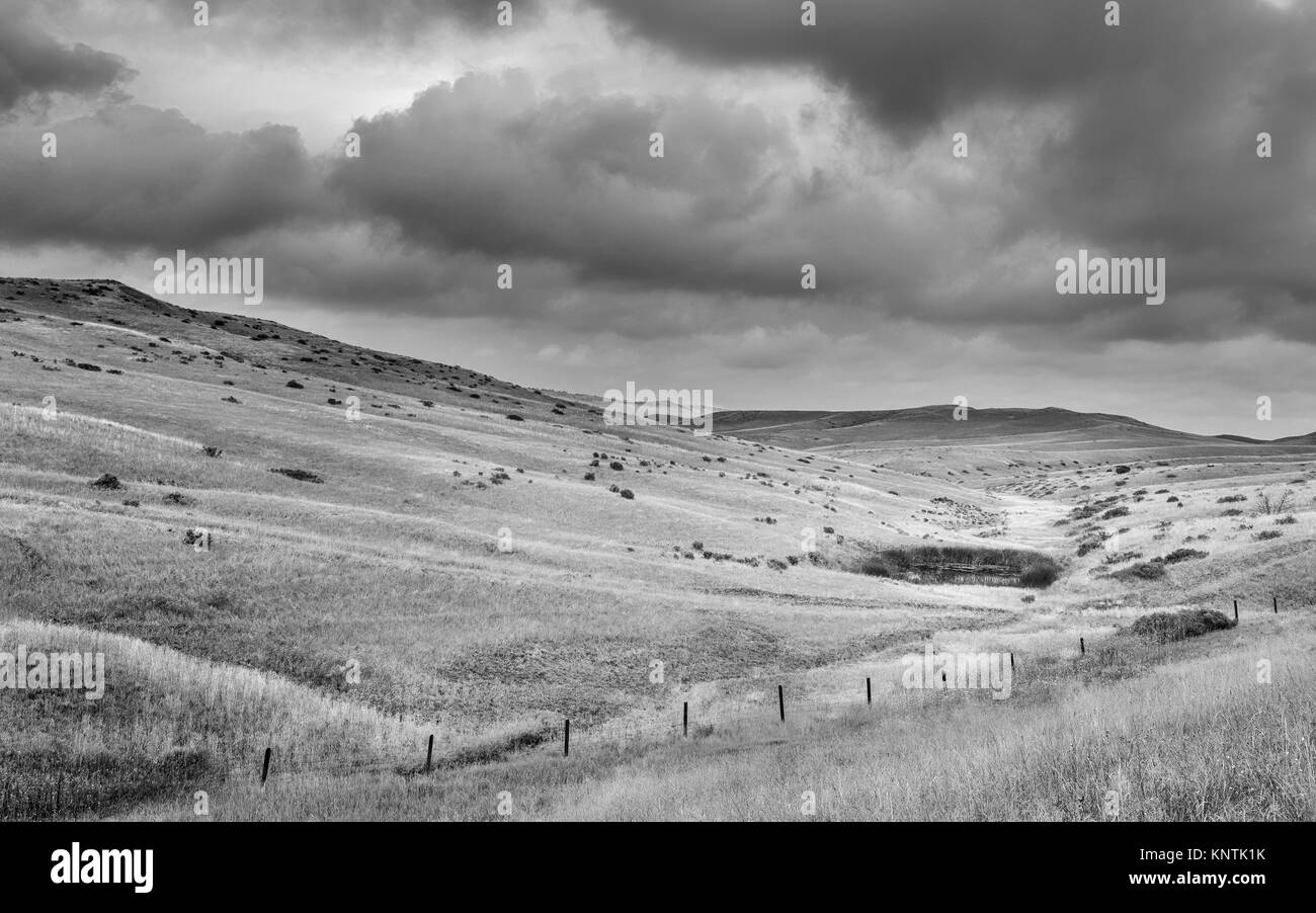 View across the rolling landscape of the prairie and an isolated waterhole on an overcast day near Billings, Montana, - Stock Image