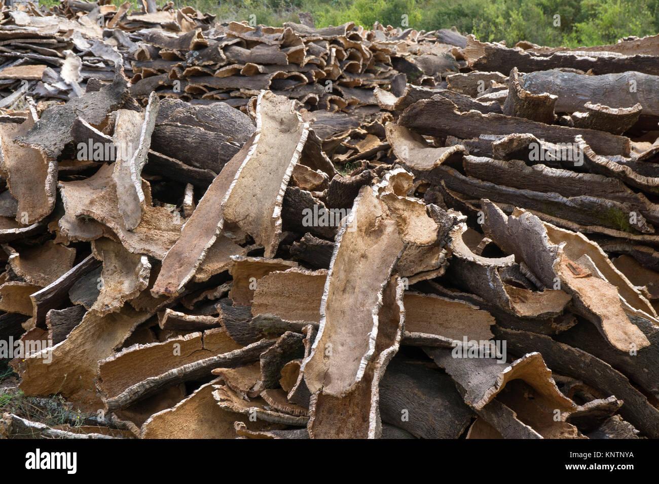 Stacked crust of cork oak (Quercus suber), Olbia-Tempio, Gallura, Sardinia, Italy, Mediterranean sea, Europe - Stock Image