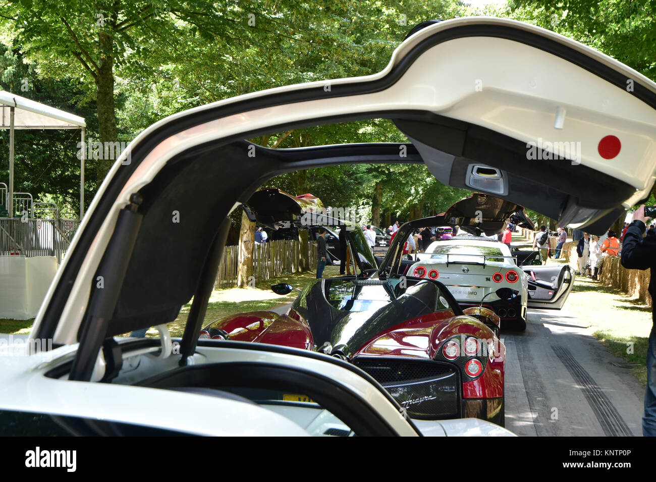 Gull wing doors Goodwood Festival of Speed 2014 2014 Autosport cars classic cars exotic cars famous cars Festival of Speed Goodwood Goodwoo & Gull wing doors Goodwood Festival of Speed 2014 2014 Autosport ...