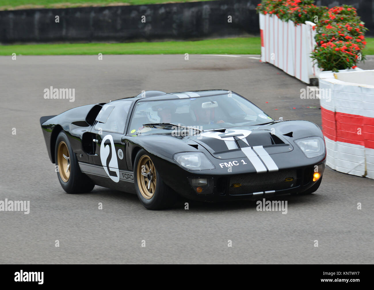 David Hart, John Hugenholtz, Goodwood Revival 2013, Whitsun Trophy race for GT40's. FMC 1. - Stock Image