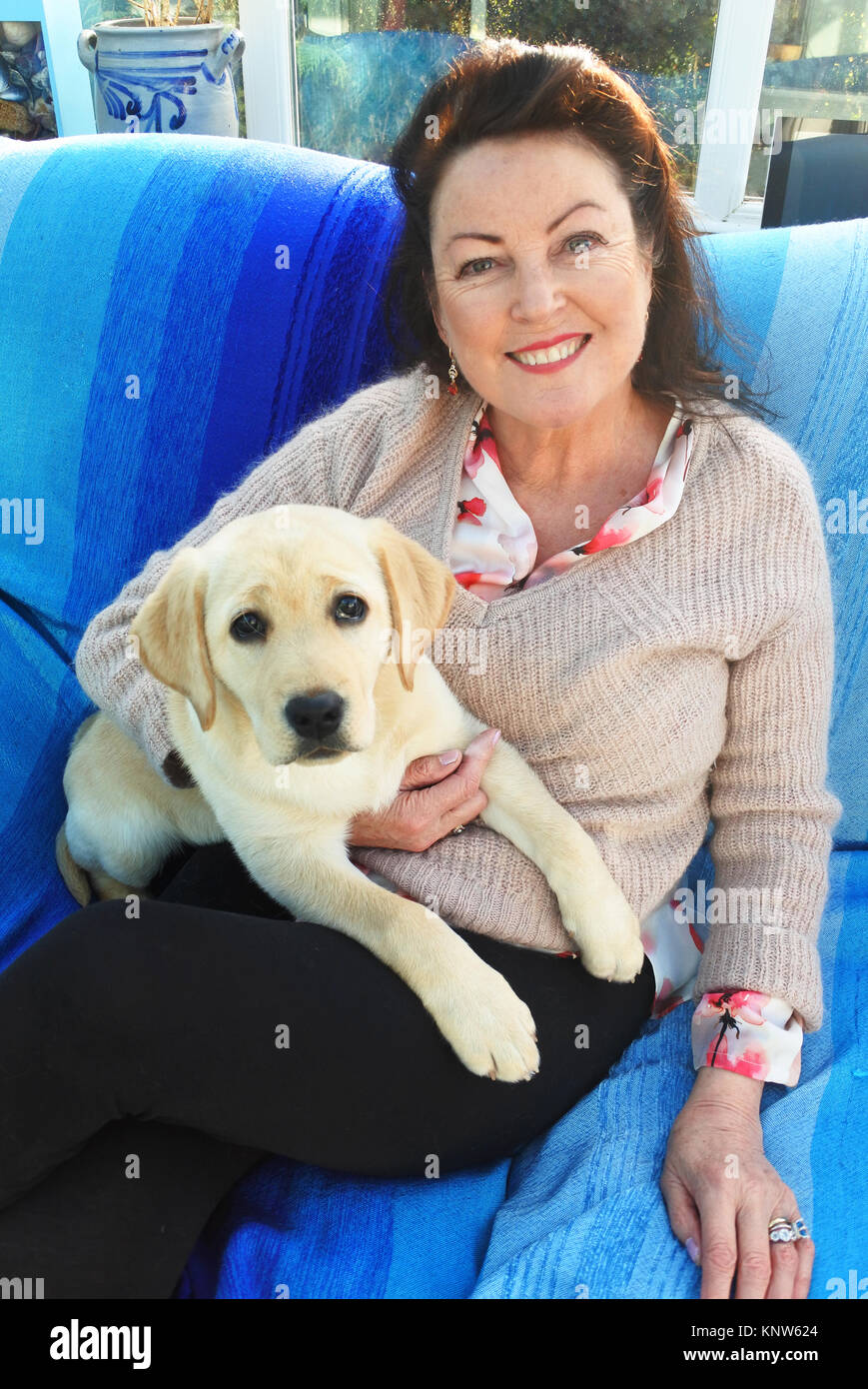 Mature Female Cuddling A Young Labrador Puppy On Her Lap John