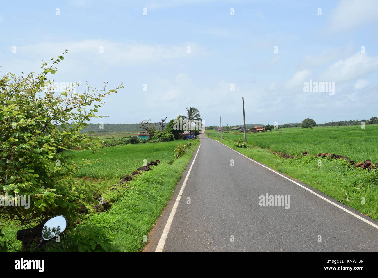 Asphalt Roads With Greenery In Side Amazing Beautiful Road View Stock Photo Alamy
