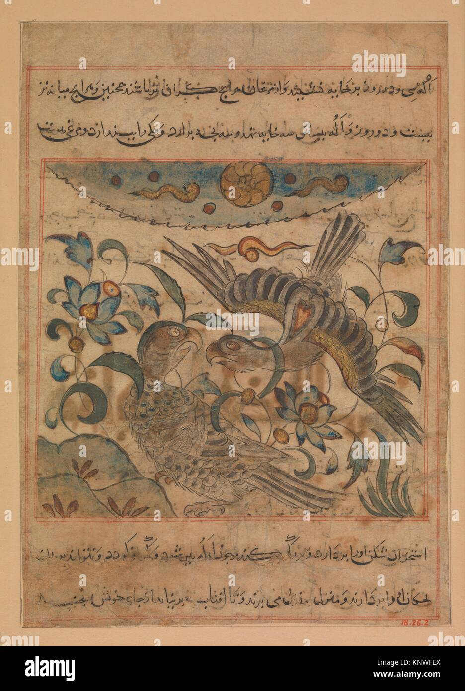 Pair of Eagles, Folio from a Manafi' al-Hayawan (On the Usefulness of Animals) of Ibn Bakhtishu'. Author: - Stock Image