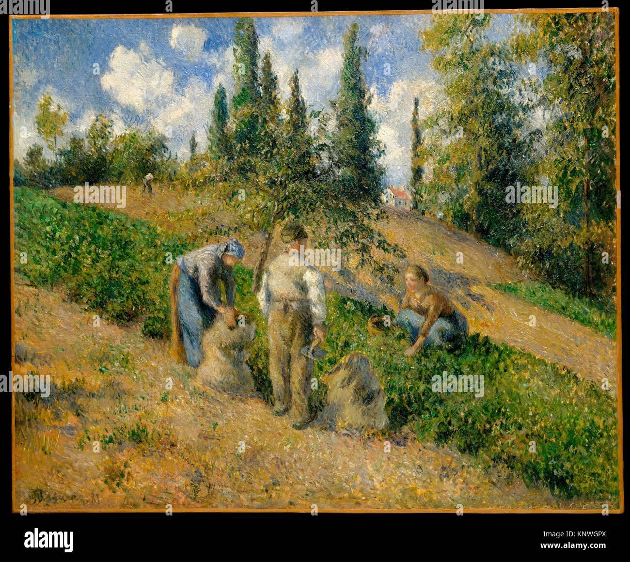 The Harvest, Pontoise (La Récolte, Pontoise). Artist: Camille Pissarro (French, Charlotte Amalie, Saint Thomas - Stock Image