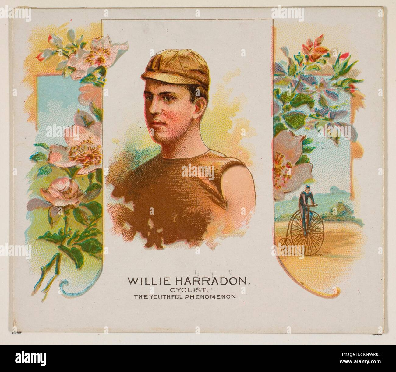 Willie Harradon, Cyclist, The Youthful Phenomenon, from World's Champions, Second Series (N43) for Allen & - Stock Image