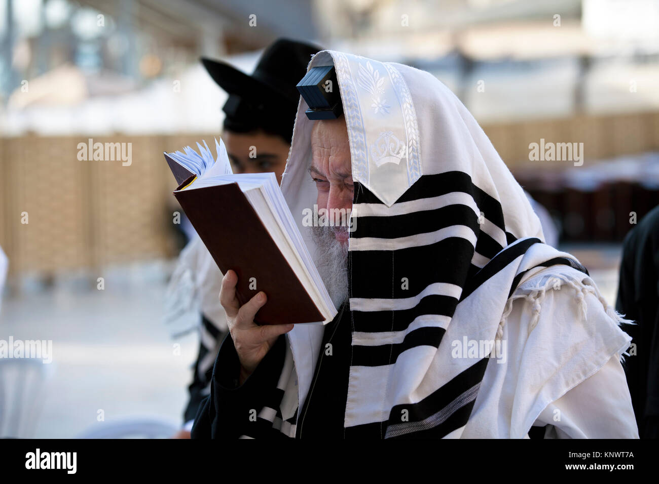 An old orthodox Jew reads a torah at the Western Wall in the center of Jerusalem, Israel Stock Photo