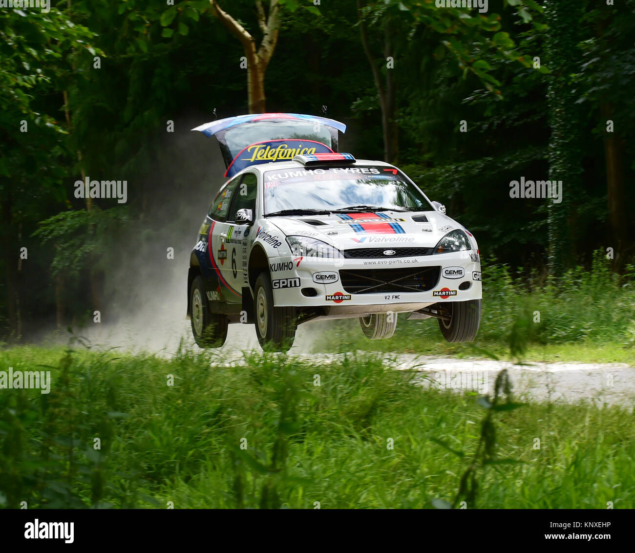Louise Cook, Ford Fiesta R2, V 2 FMC, Forest rally stage, Goodwood FoS 2015, 2015, Classic, entertainment, fearless, - Stock Image
