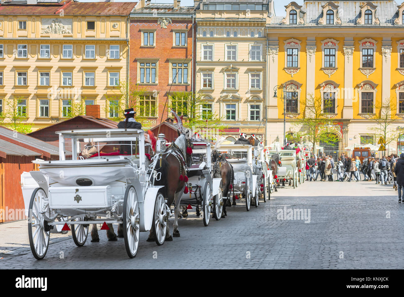 Horse-drawn carriages available for tours of the city of Krakow line up in the city's Market Square, Poland. - Stock Image
