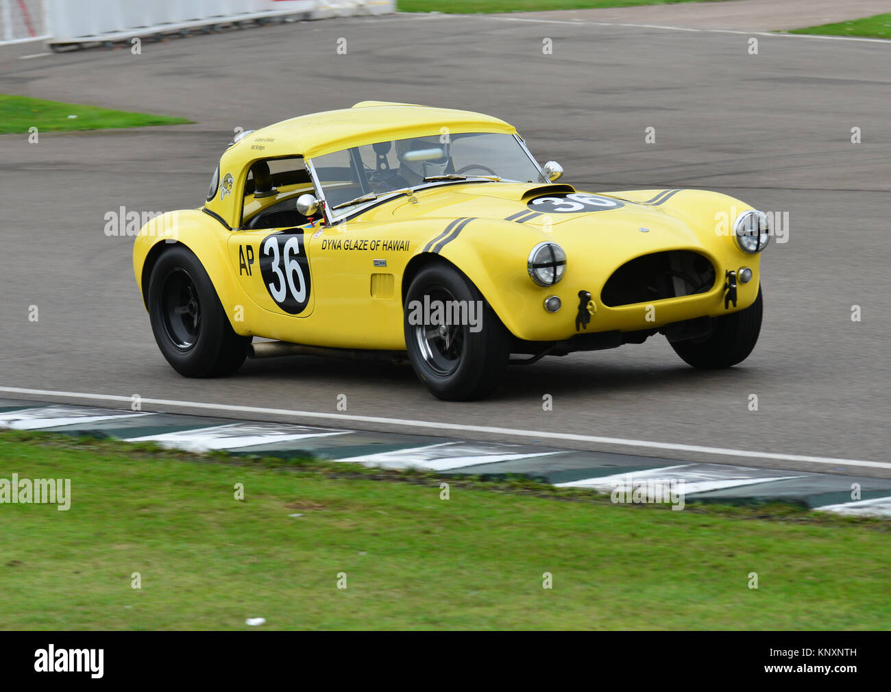 Hairy Canary, Bill Bridges, Ludovic Lindsay, AC Cobra. Royal Automobile Club TT Celebration, Goodwood Revival 2013 - Stock Image
