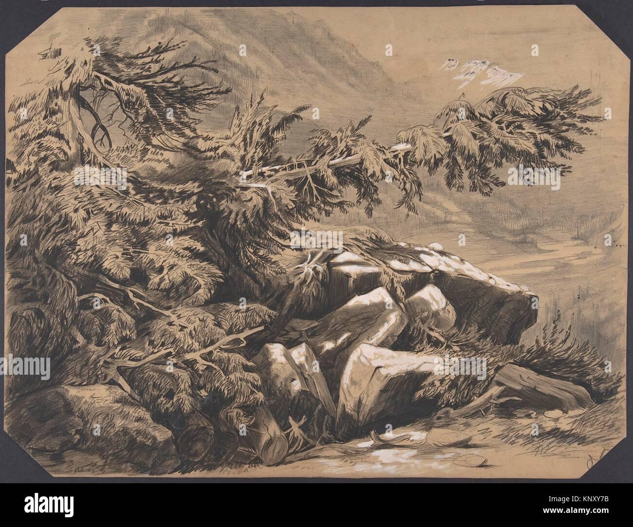 Forets et Montagnes. Artist: Alexandre Calame (Swiss, Vevey 1810-1864 Menton); Date: 1830-64; Medium: Graphite with - Stock Image