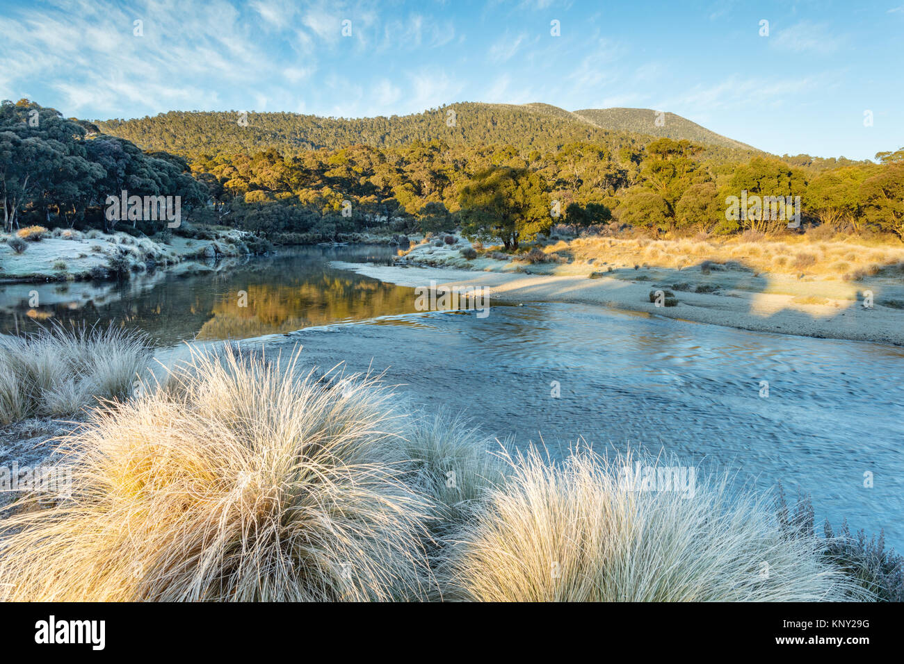 Frosty morning at the Thredbo River at Thredbo Diggings in Kosciuszko National Park in the Snowy Mountains in southern Stock Photo