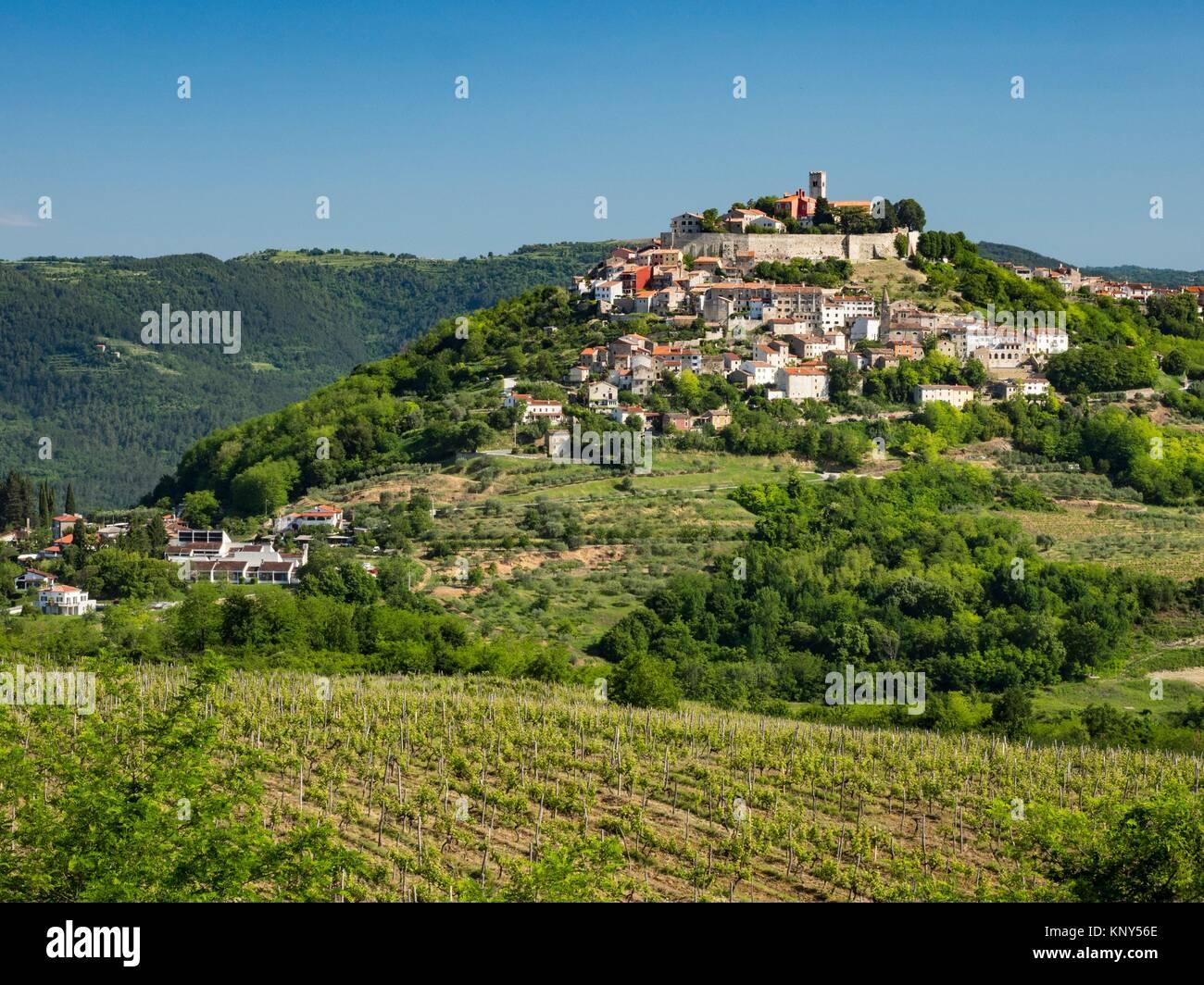 Motovun Croatia Medieval Town. - Stock Image