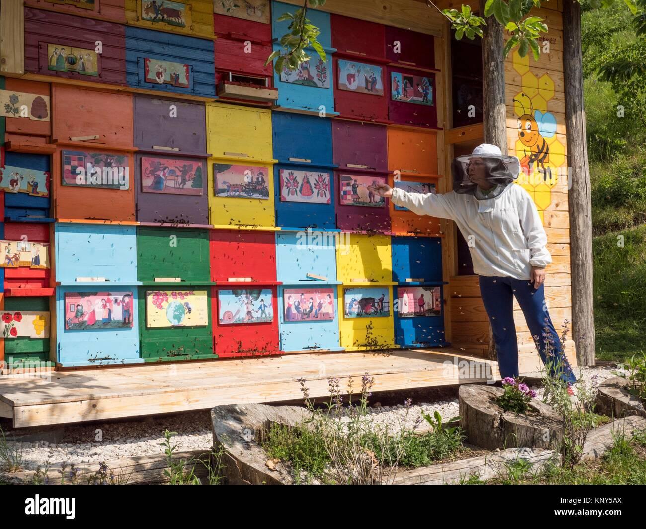 Slovenia Bumble Bees Beekeepeer. - Stock Image