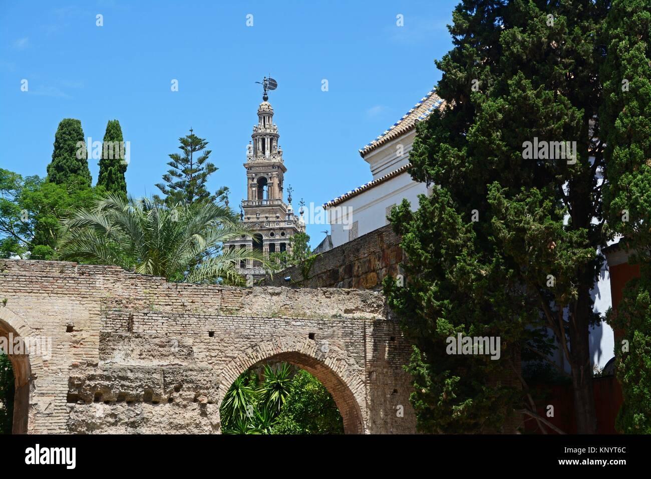 La Giralda as seen from the Patio de la Monteria. Real Alcazar. Seville, Andalucia, Spain, Europe. Keywords: - Stock Image