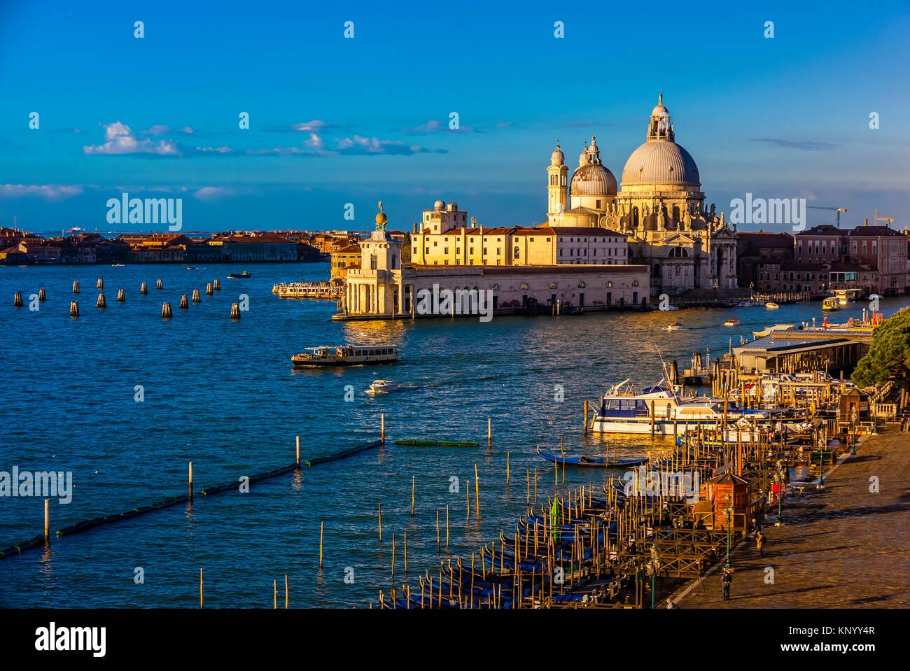 Overview of the Basilica di Santa Maria della Salute, Venice, italy. - Stock Image
