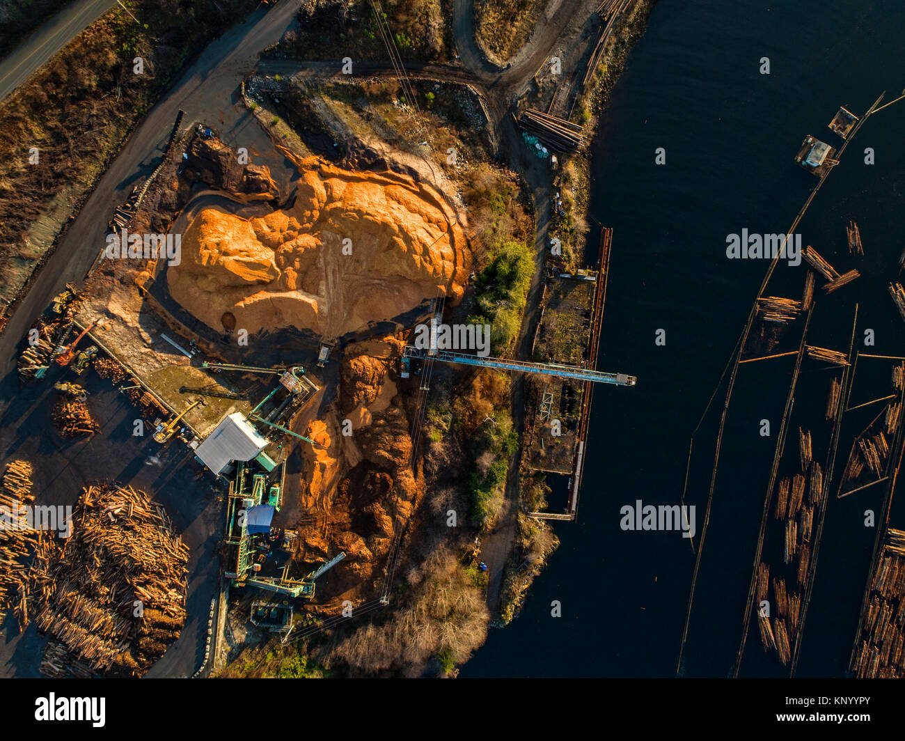 Aerial view of logs in the water at Beaver Cove Log Sort near Telegraph Cove, Northern Vancouver Island, British - Stock Image