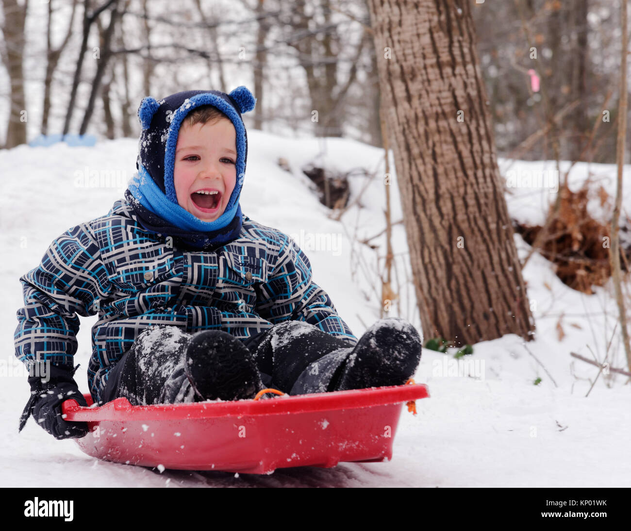 A little boy laughing as he slides on his sledge in Quebec in winter Stock Photo