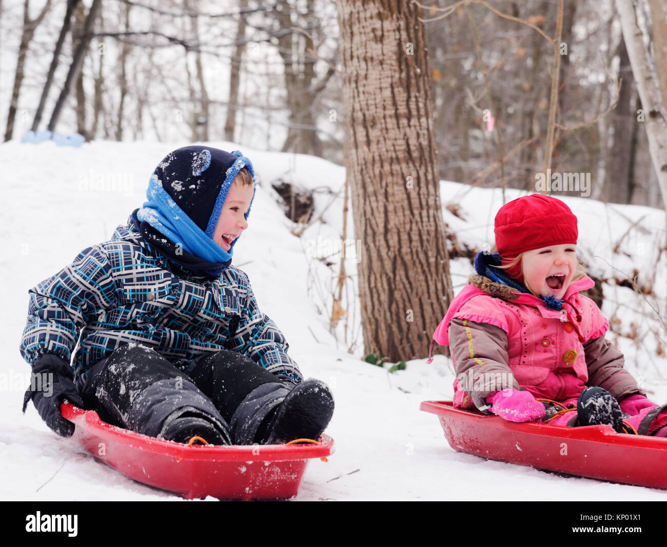 Brother and sisters (5 and 3 yrs old) sledging together in Quebec in winter - Stock Image