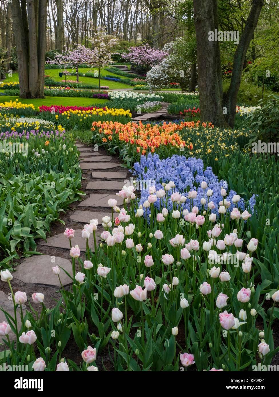 Holland Keukenhof Gardens. - Stock Image