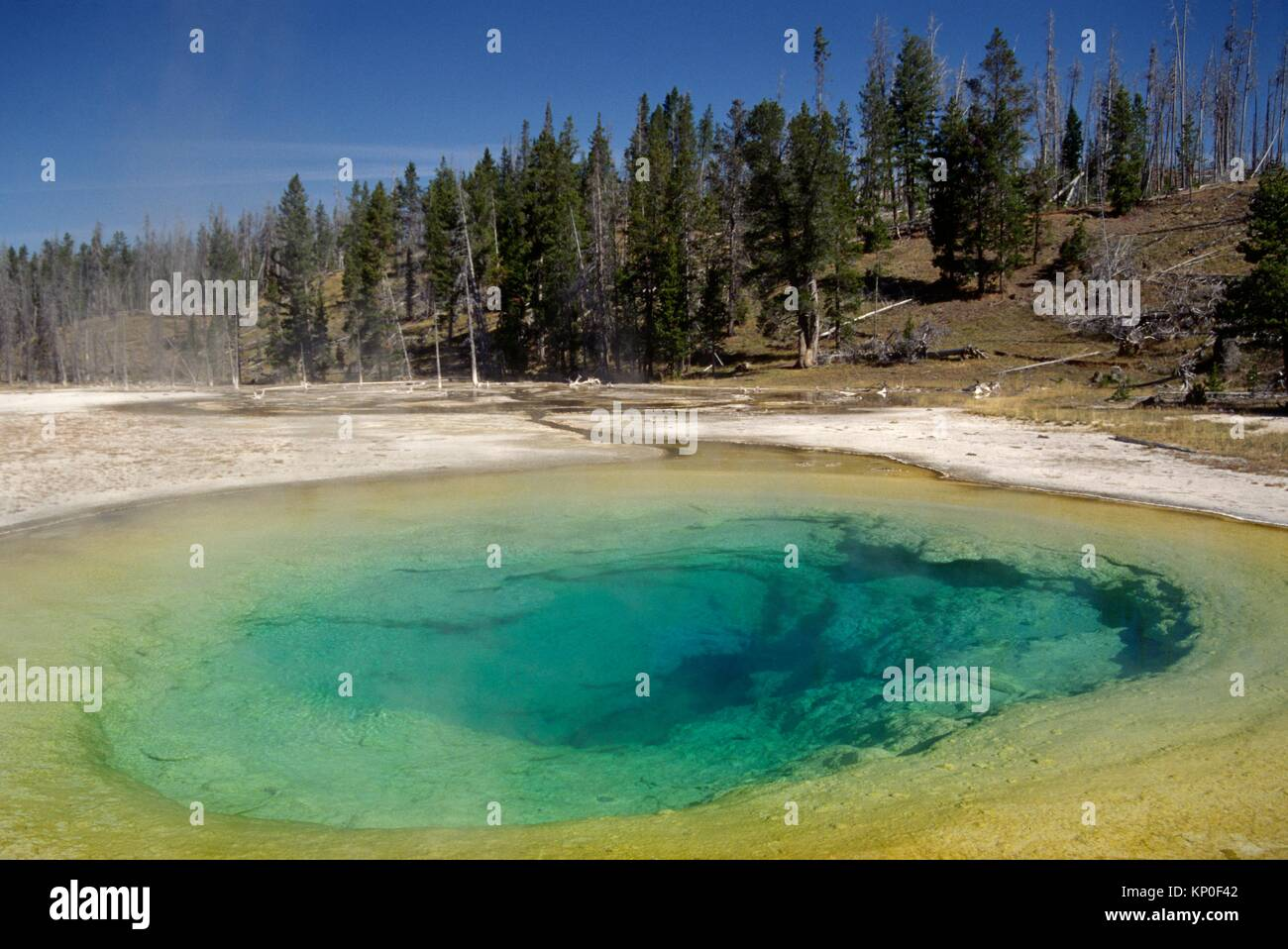 Morning Glory Pool, Yellowstone National Park, Wyoming. - Stock Image