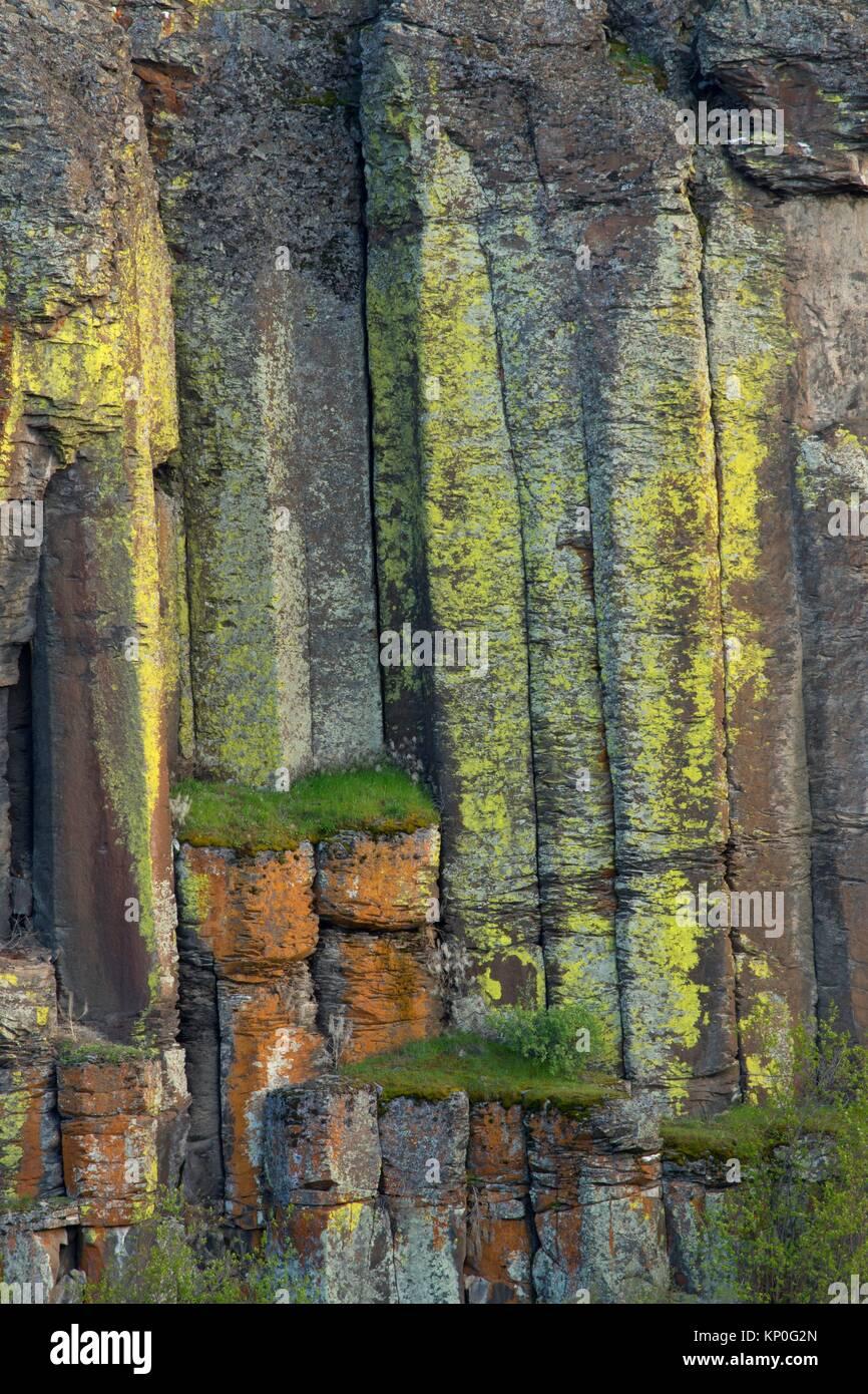Columnar basalt near Dusty Lake Trail, Quincy Lakes Unit - Desert Basin Wildlife Area, Washington. - Stock Image