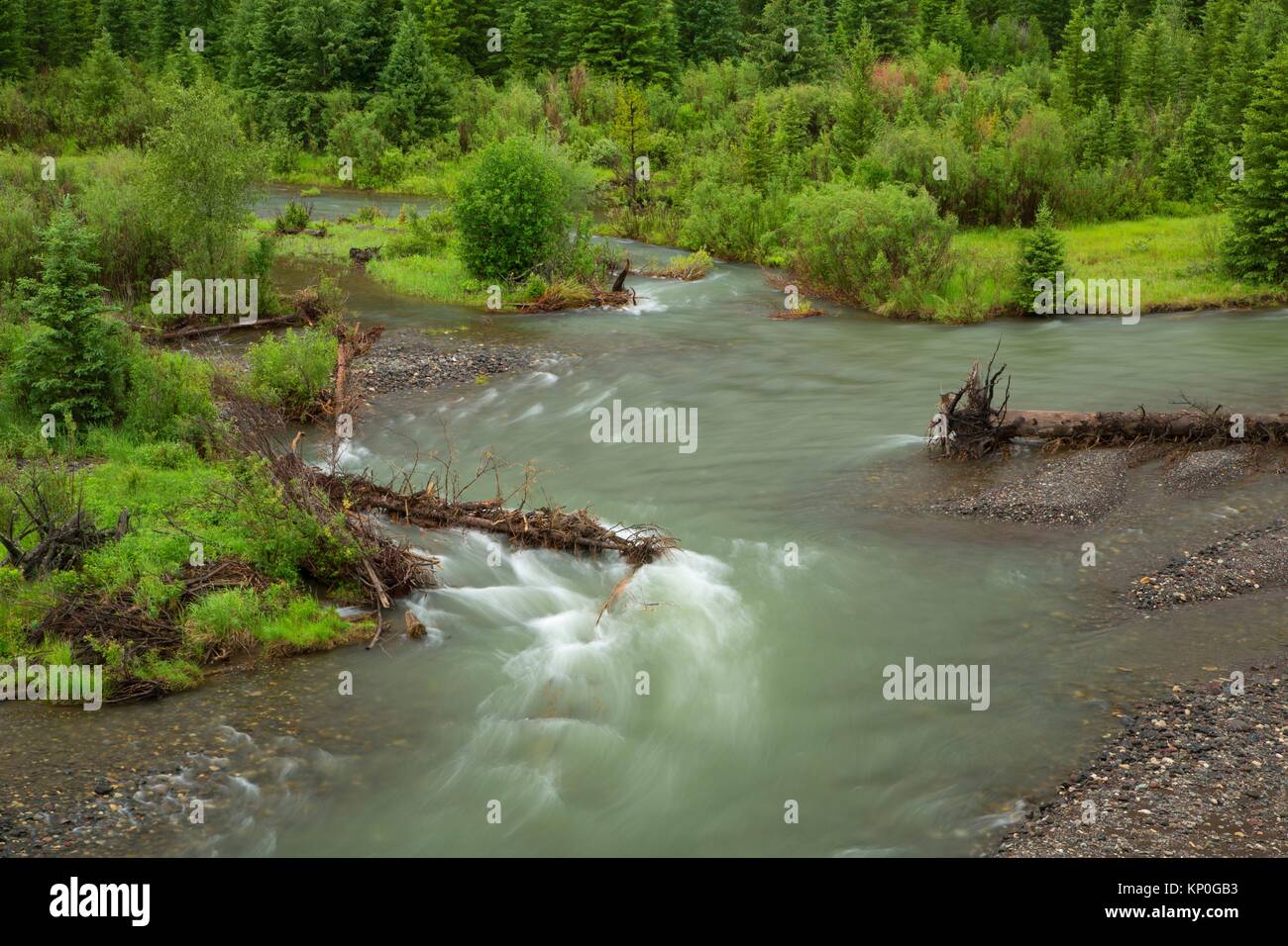 Clarks Fork fo the Yellowstone, Shoshone National Forest, Beartooth Highway Scenic Byway, Wyoming. - Stock Image