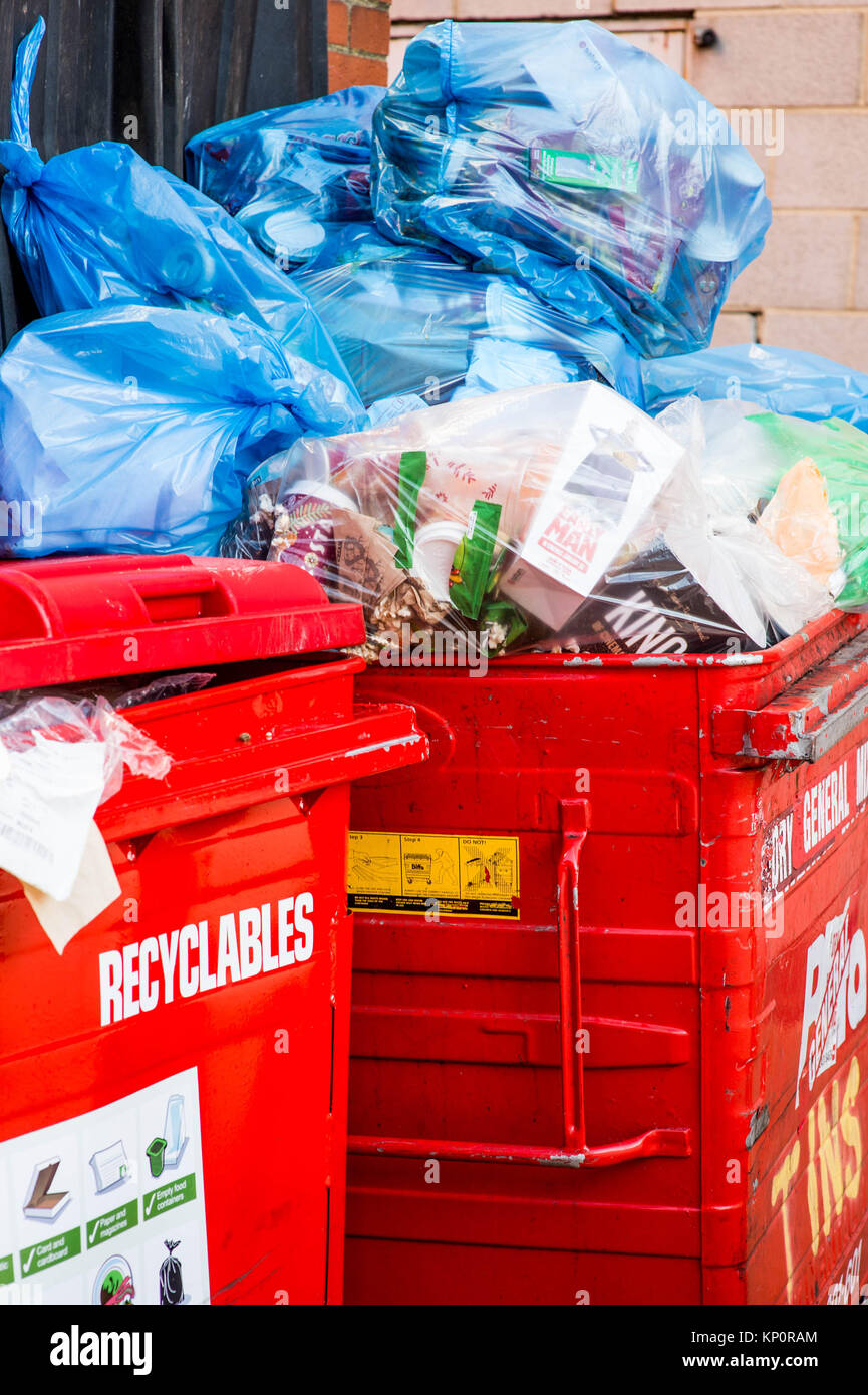 Red Wheely Bins Full of Retail Rubbish or Waste In Blue Plastic Bags - Stock Image