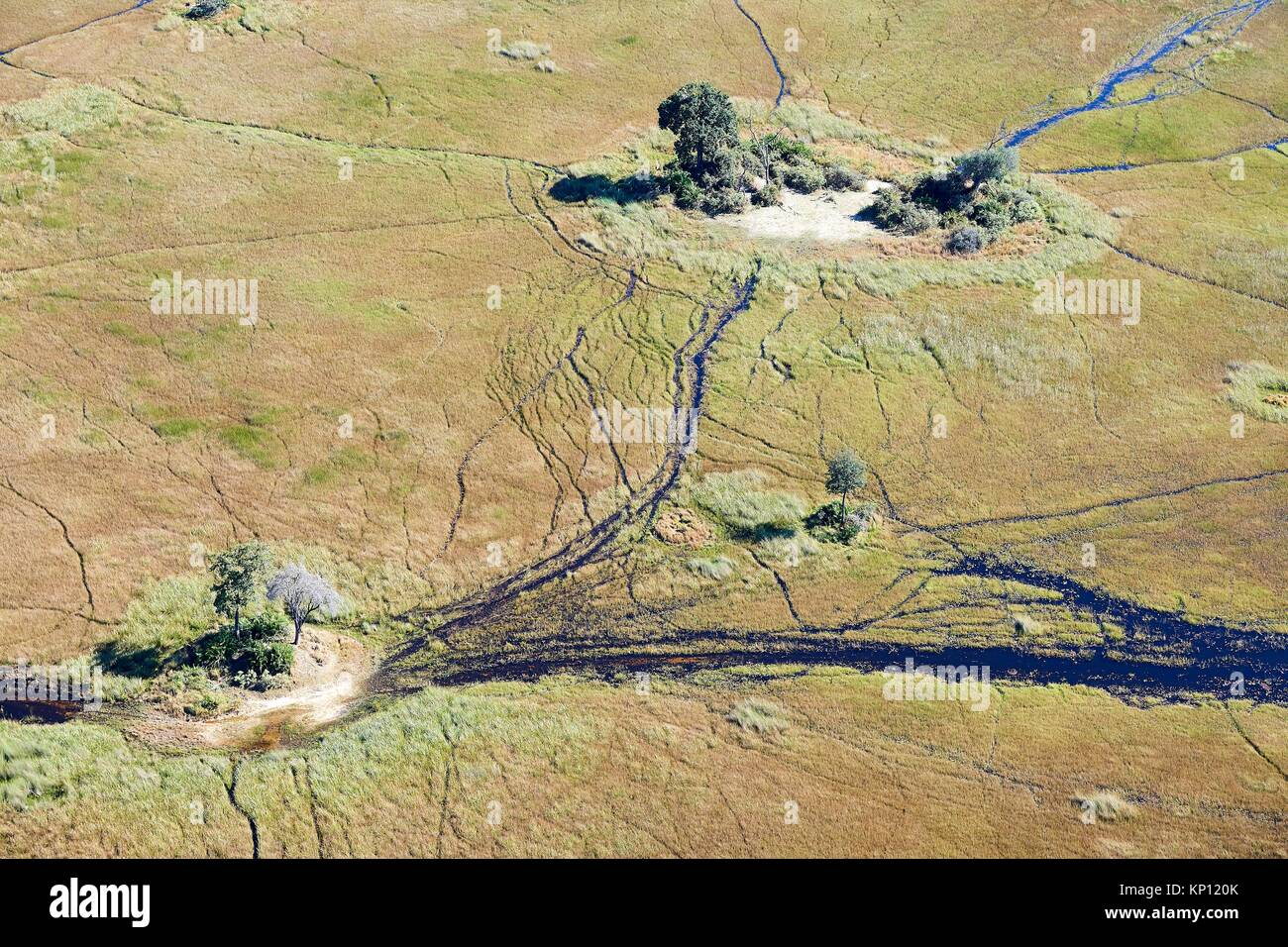 Aerial view of the Okavango delta with channels, swamps and islands, Botswana, Africa. Stock Photo