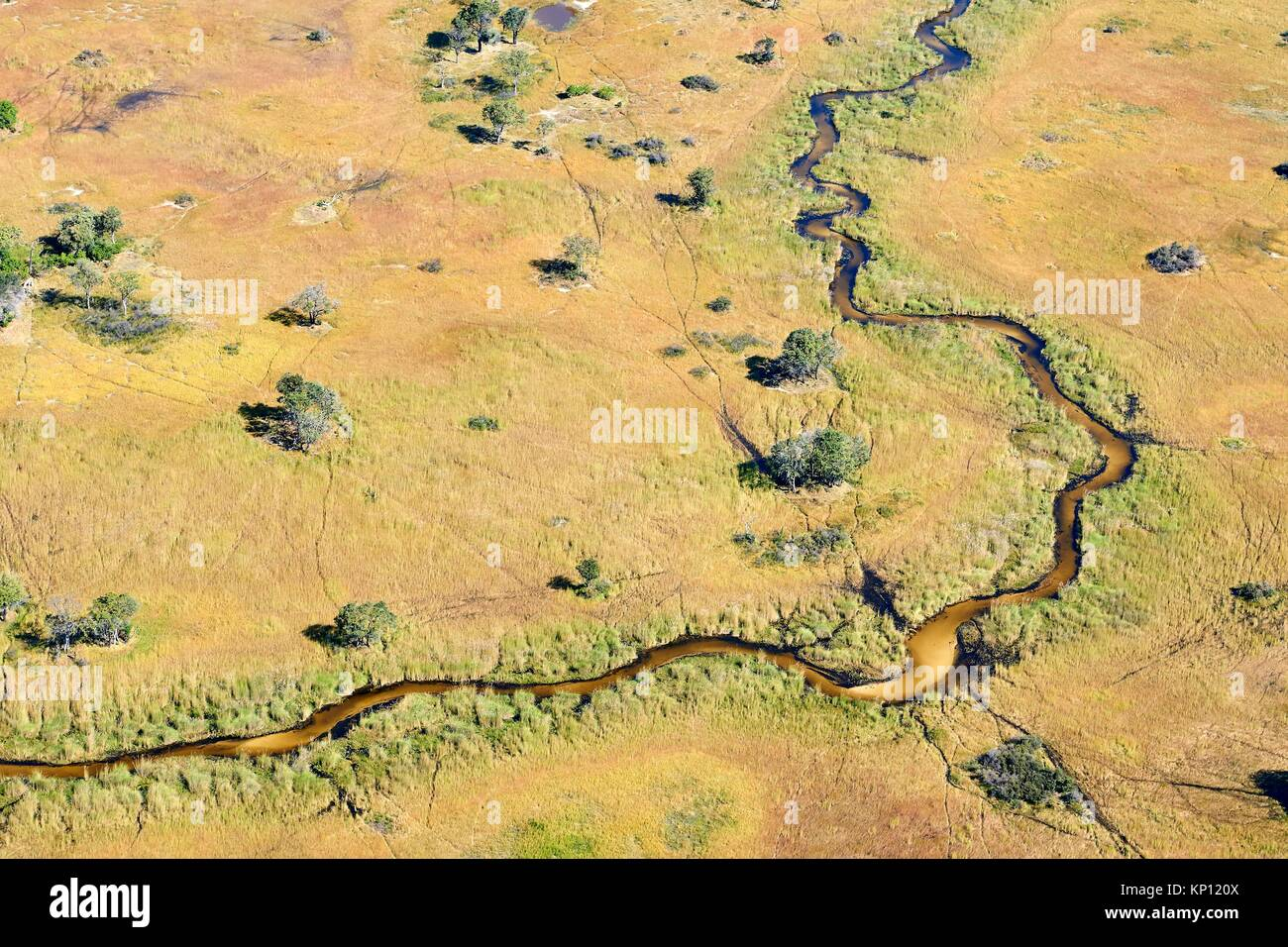 Aerial view of the Okavango delta, a channel with a sandy bed meanders through the swamp, Botswana, Africa. - Stock Image