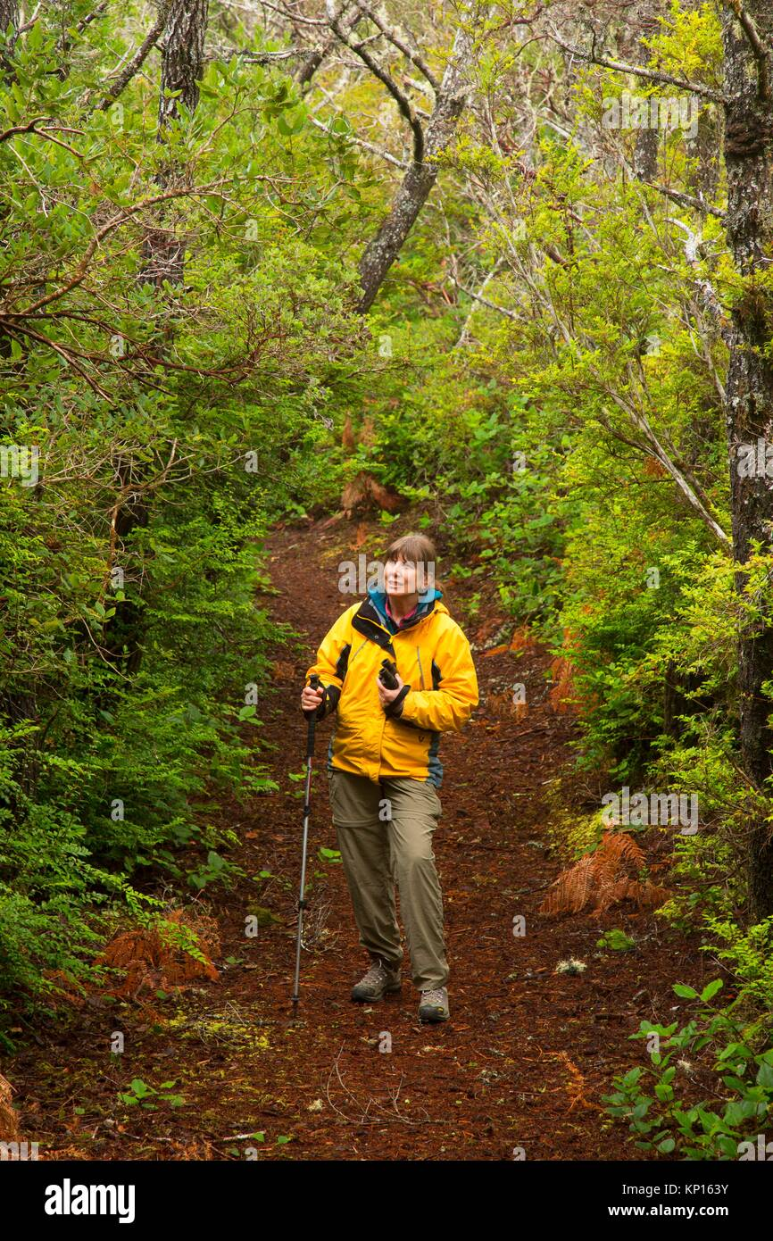 Hiker on Ridge Trail, New River Area of Critical Environmental Concern-Storm Ranch, Oregon. - Stock Image