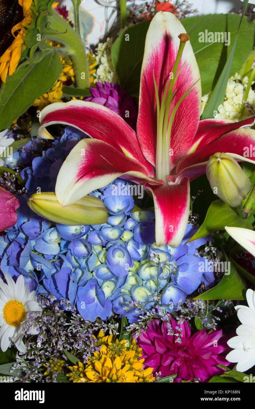 Flower bouquet, Salem Saturday Marker, Salem, Oregon. - Stock Image