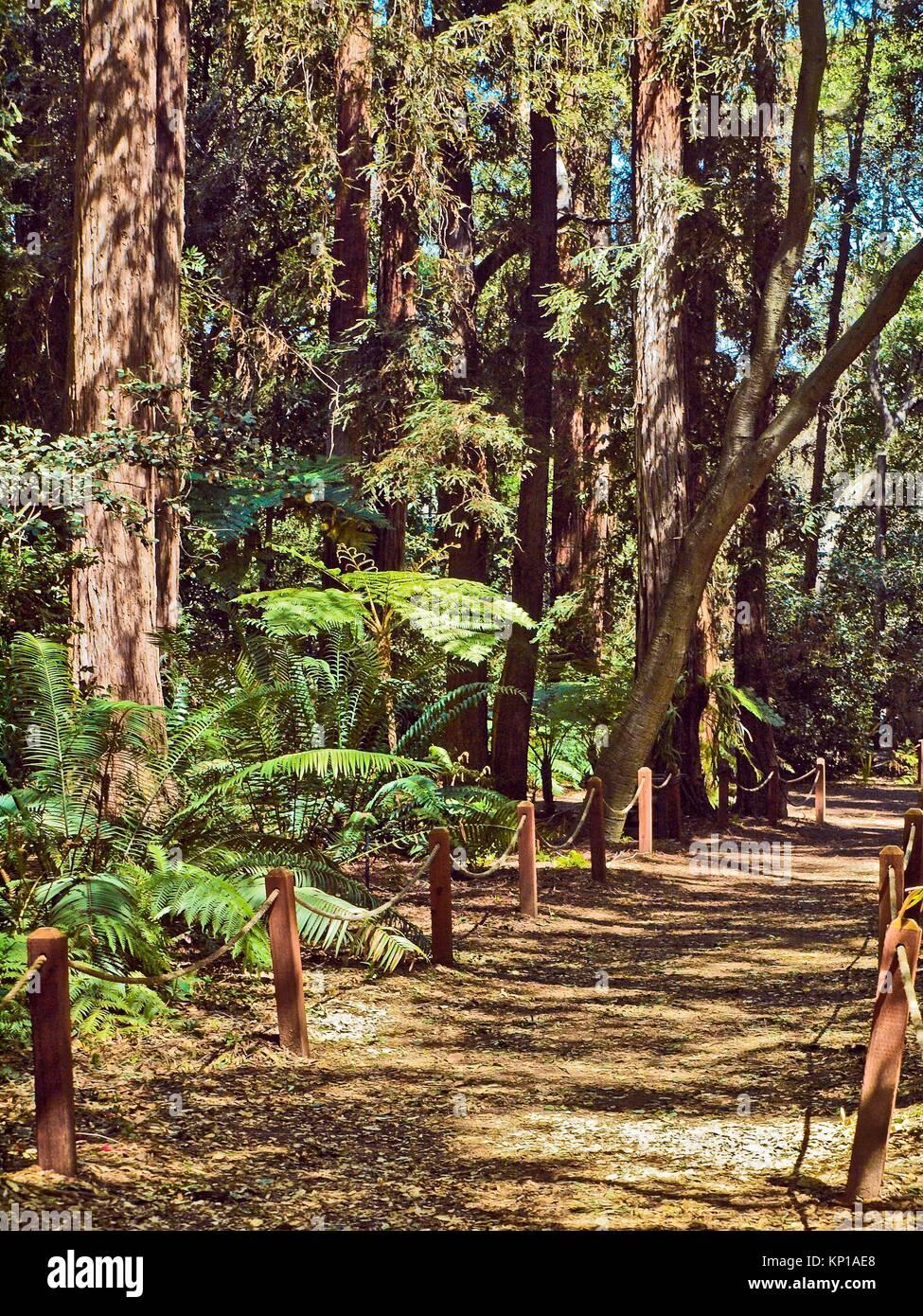 Descanso Gardens Stock Photos & Descanso Gardens Stock Images - Alamy