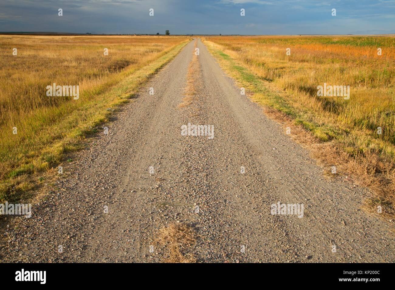 Wildlife Viewing Route, Camas National Wildlife Refuge, Idaho. - Stock Image