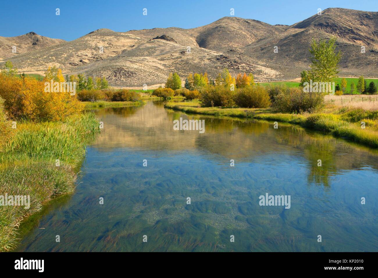 Silver Creek, Silver Creek Sportsman Access Area, Idaho. - Stock Image