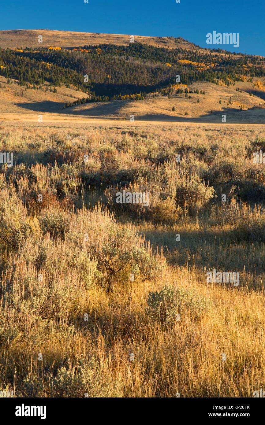 Centennial Valley, Beaverhead County, Montana. - Stock Image