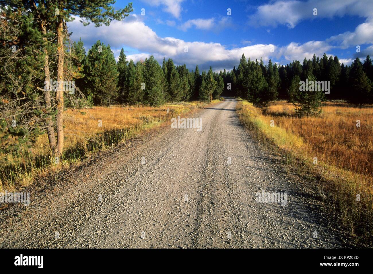 FR1643 by Logan Valley, Malheur National Forest, Oregon. - Stock Image