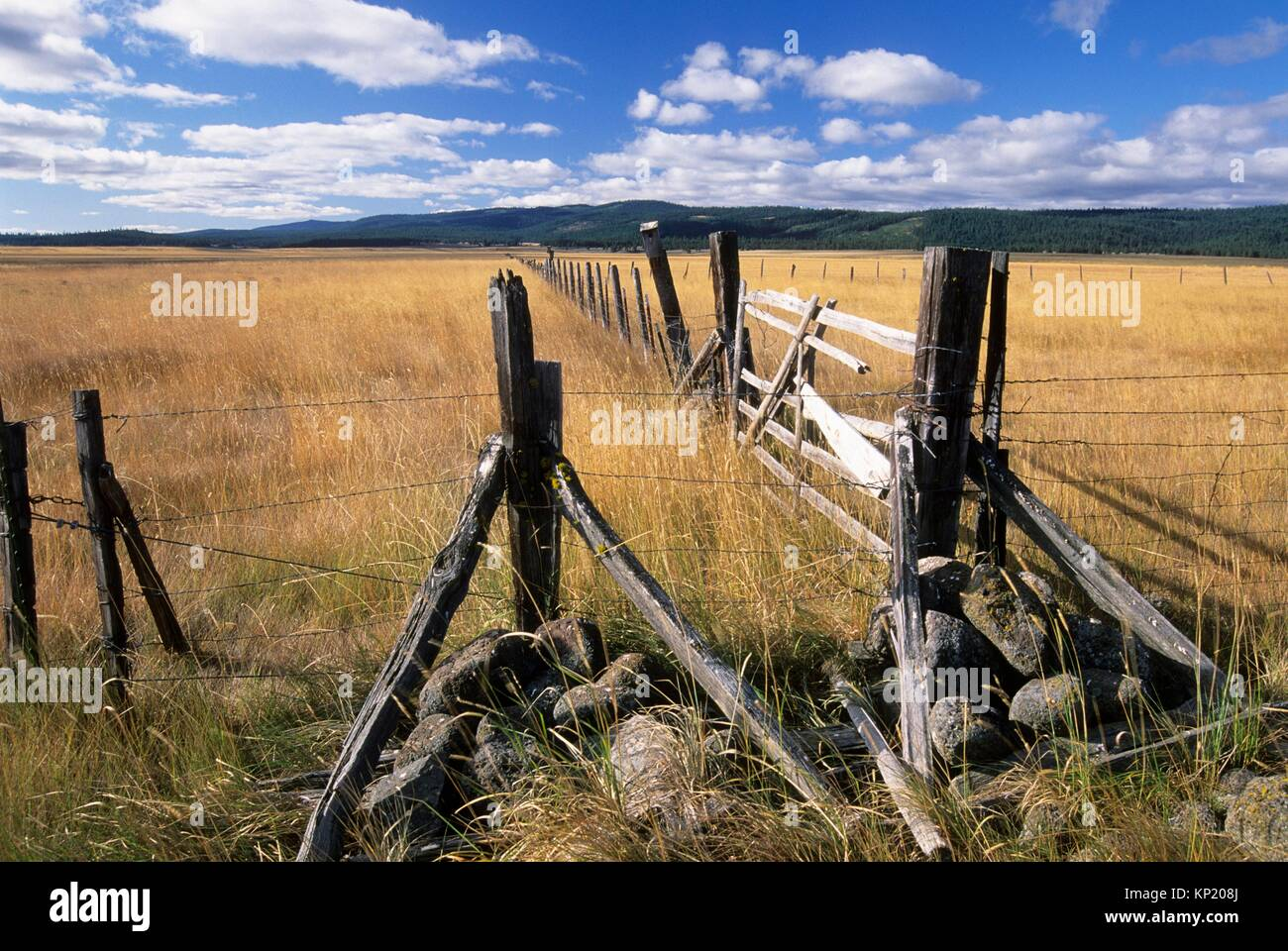 Logan Valley with ranch fence, Malheur National Forest, Oregon. - Stock Image