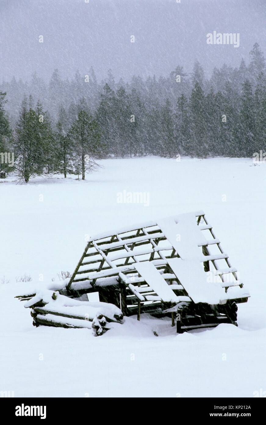 Deadwood Prairie shack in snow, Rogue River National Forest, Oregon. - Stock Image