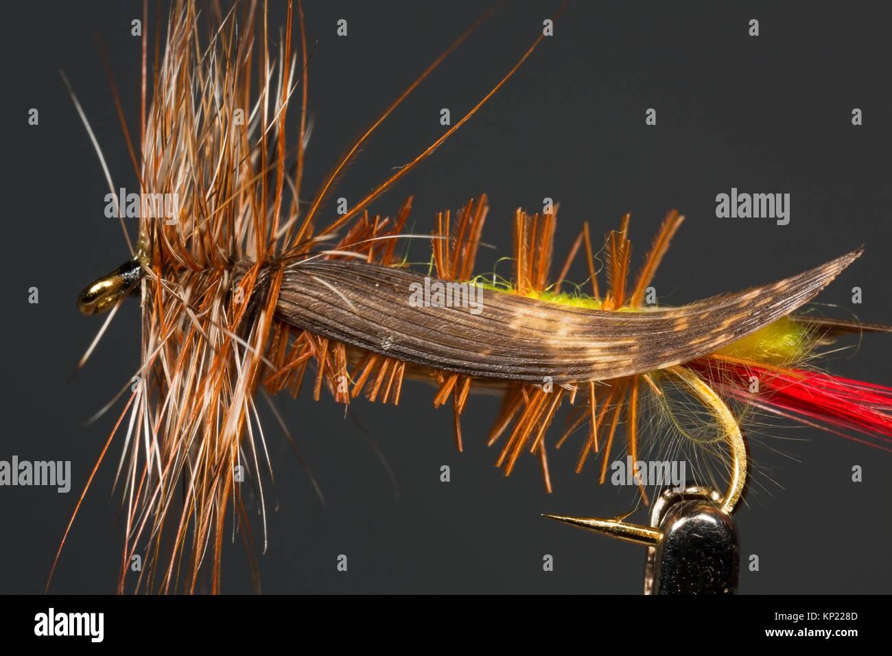 Fishing fly. Stock Photo