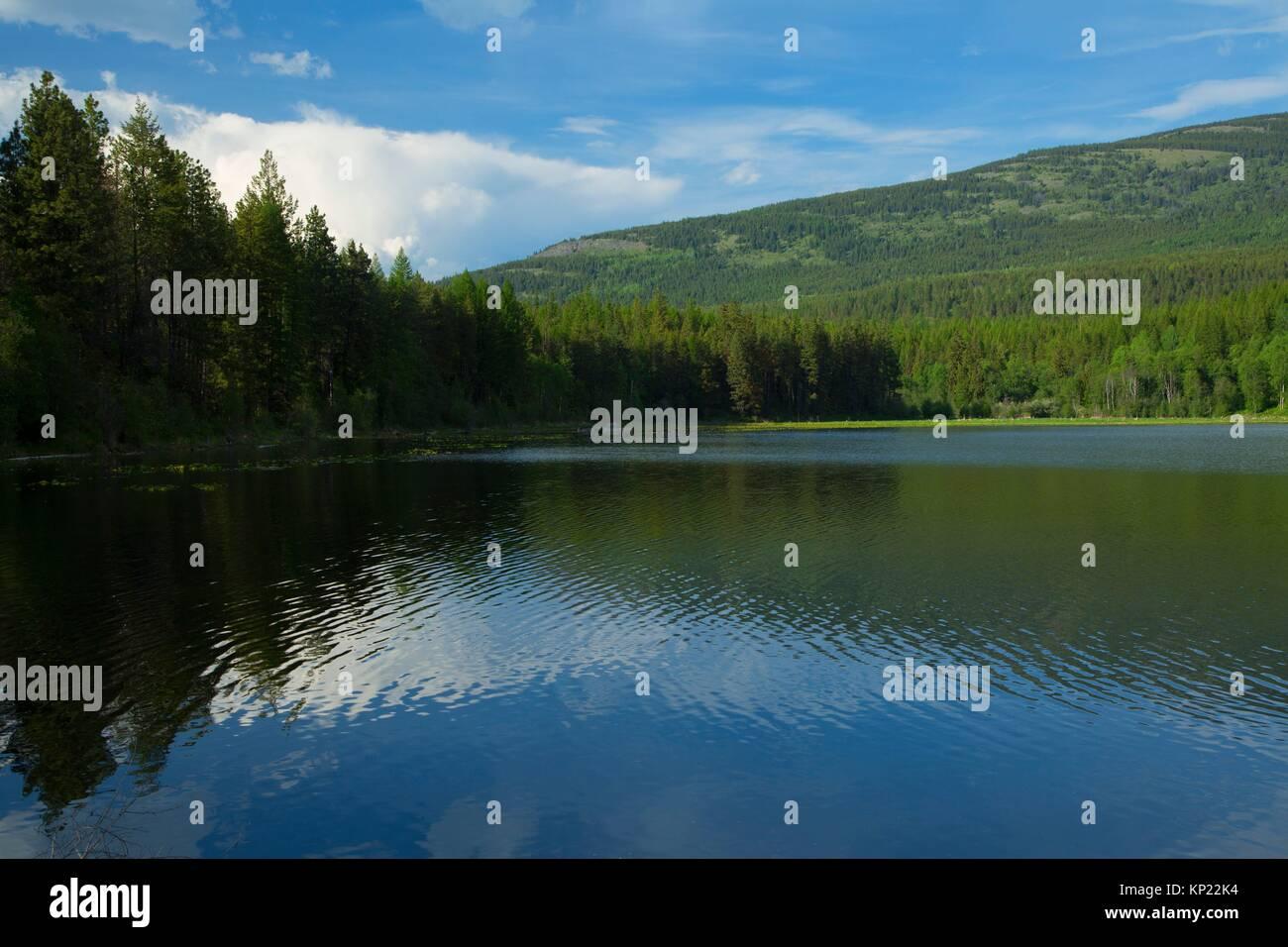 Brush Lake, Kaniksu National Forest, Idaho. - Stock Image
