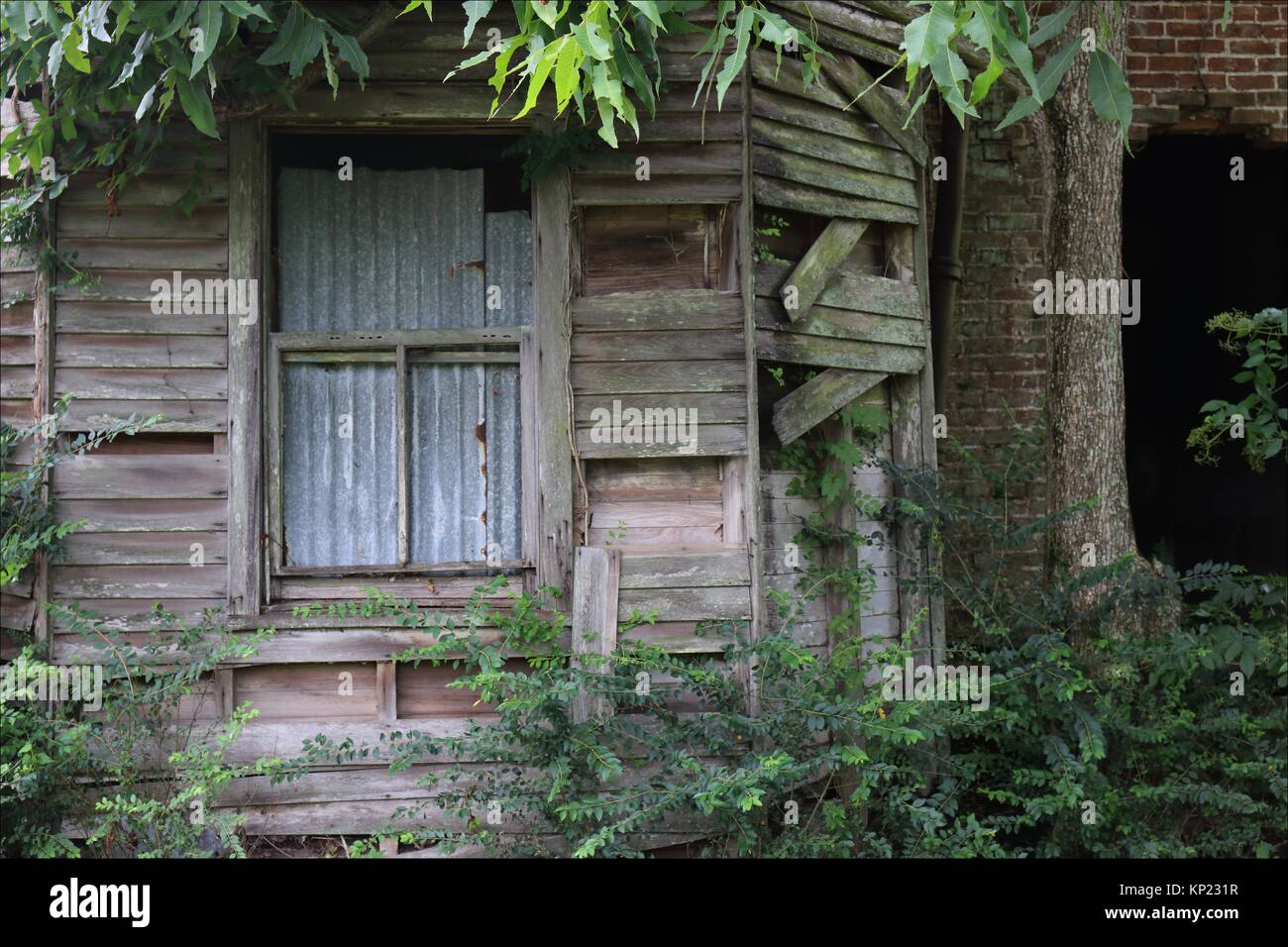 The old white house of the Laura Plantation, in Vacherie, Louisiana, has seen better days. USA - Stock Image