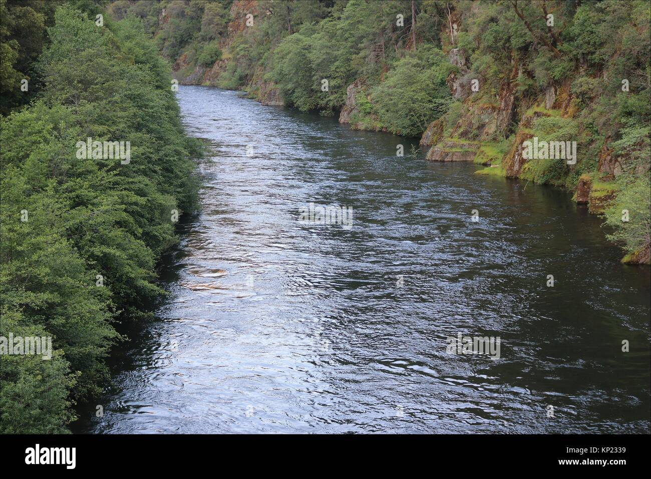 The American River flows swiftly at Poho Ridge near Pollock Pines, California. - Stock Image