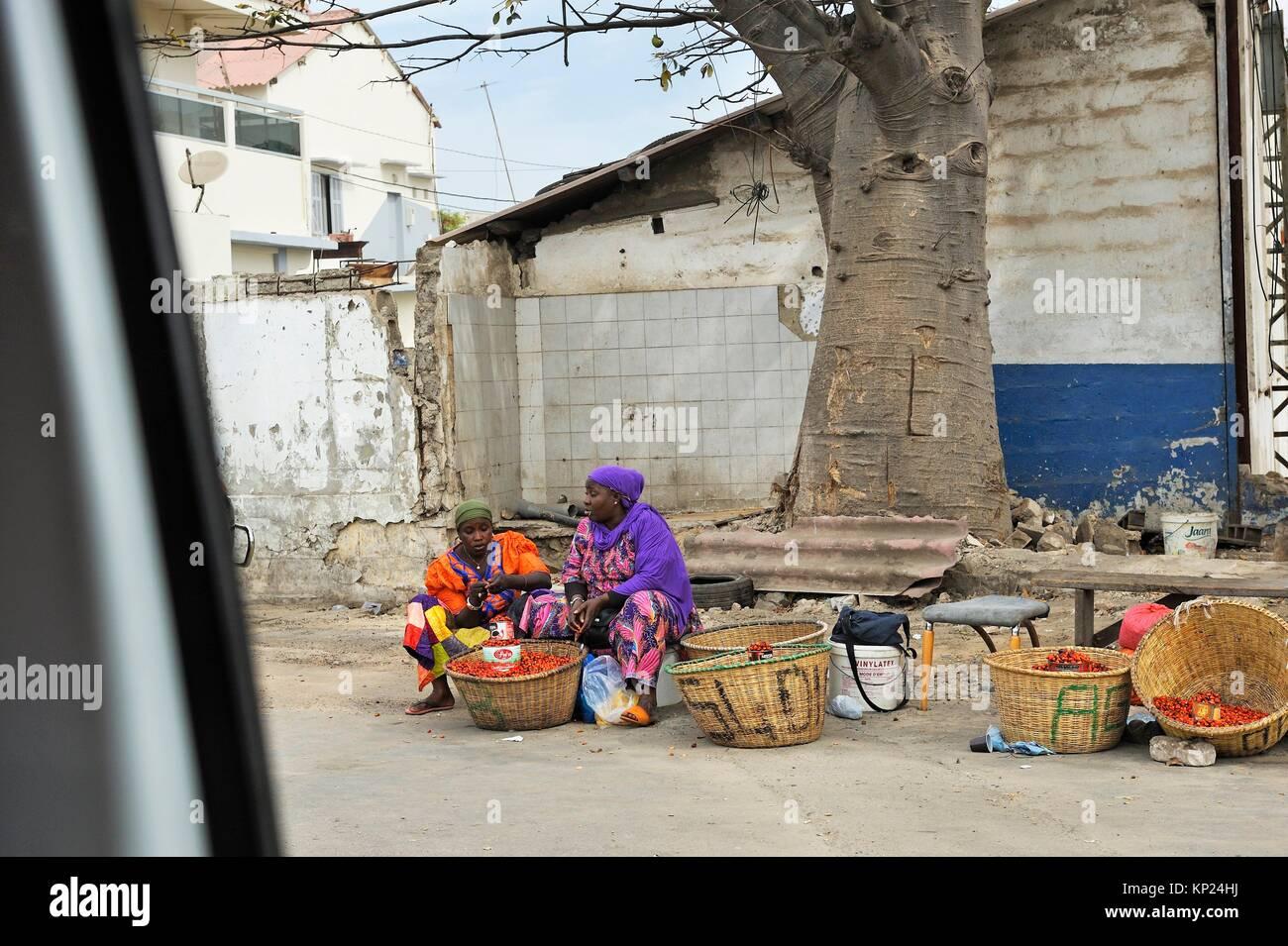 palm fruit street vendors under baobab tree, Dakar, Senegal, West Africa. - Stock Image