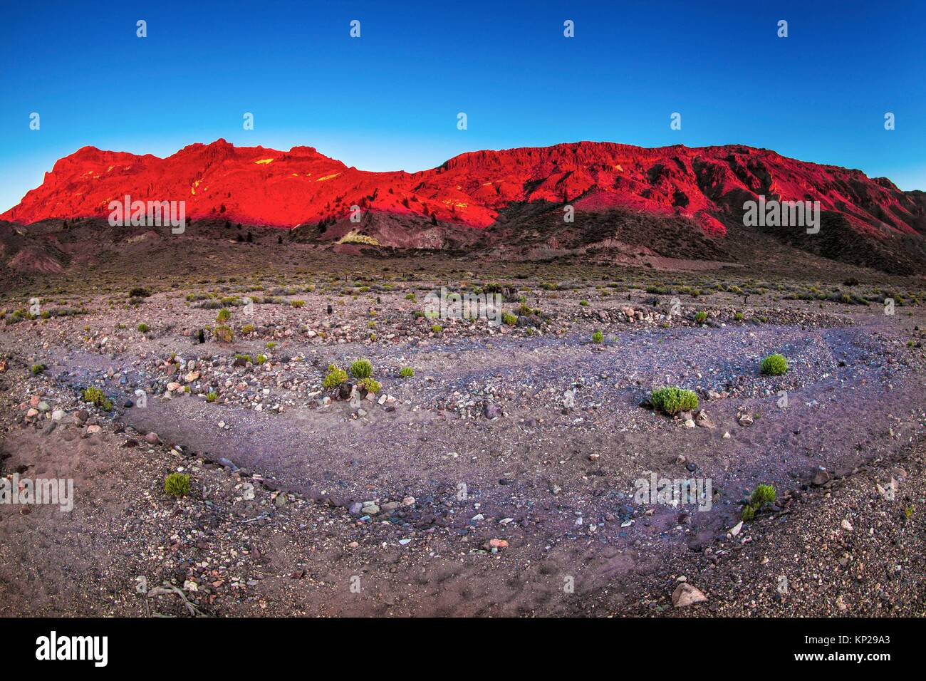 Teide National Park during the blue hour - Stock Image