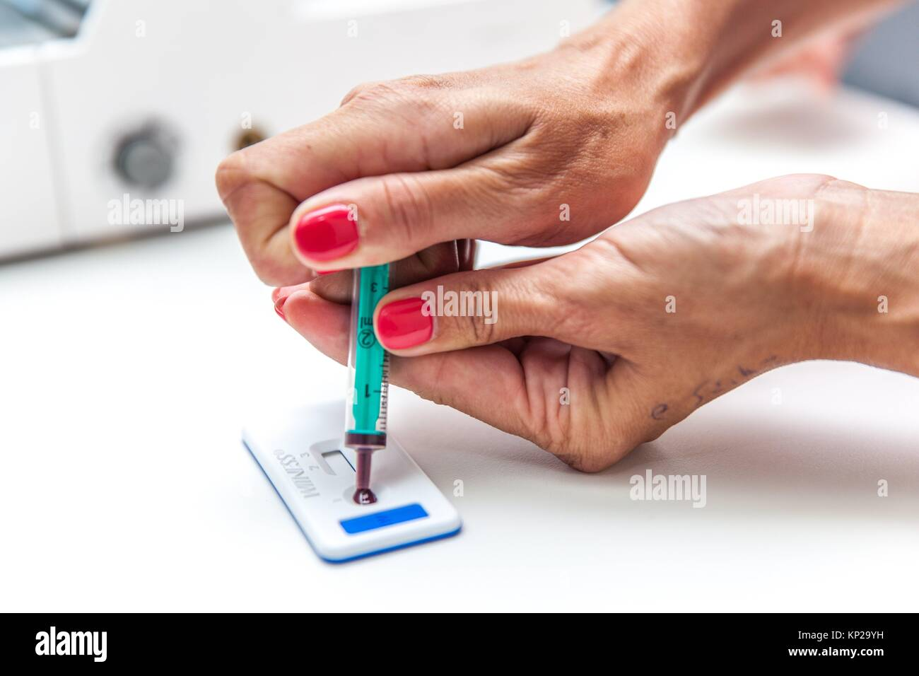 vet doing a blood test - Stock Image