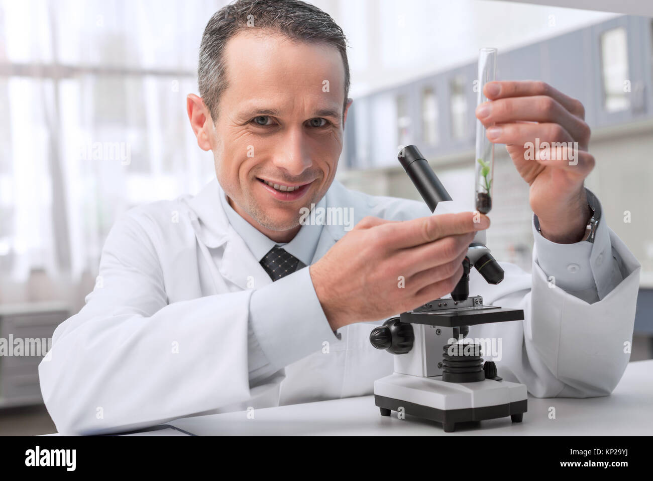 chemist working with sample - Stock Image