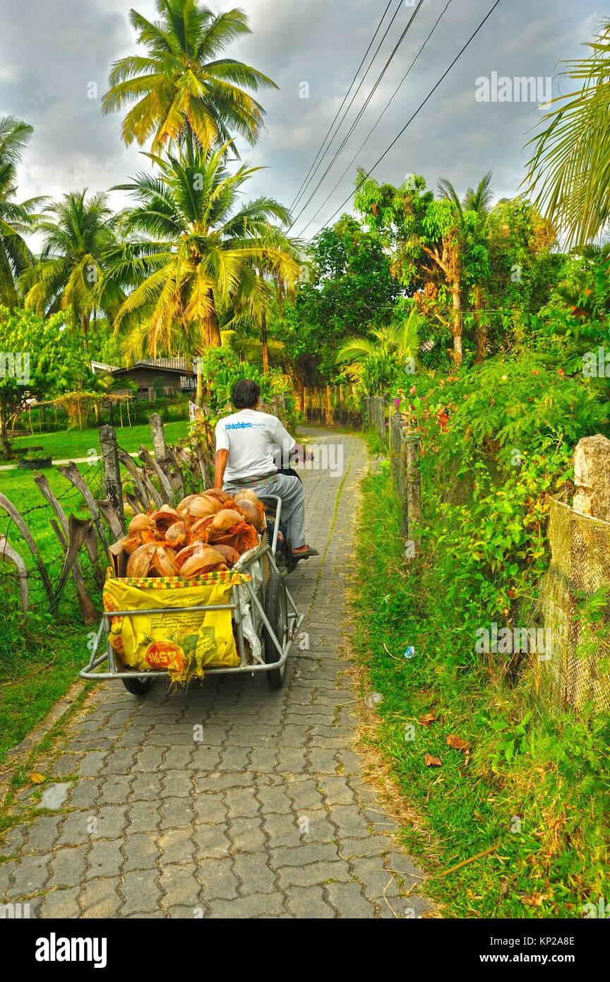 Ban Ma-Ying, Krabi, Thailand. - Stock Image