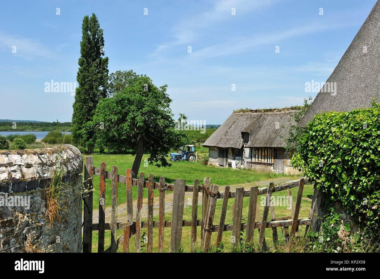 thatched cottage by the ´´La Grand-Mare´´ pond, Marais Vernier, Boucles de la Seine normande - Stock Image