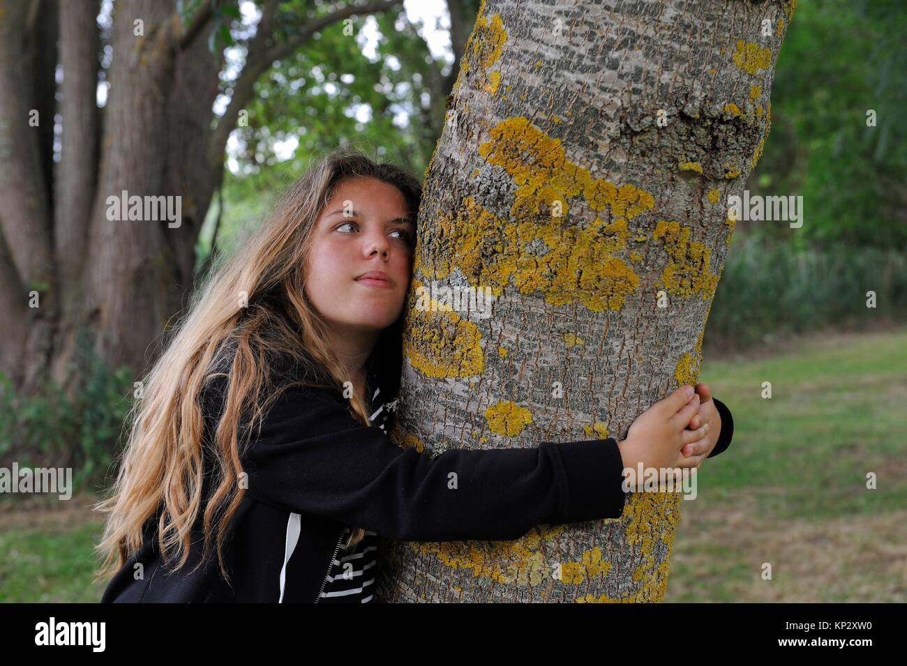 young girl embracing the trunk of an ash tree, France, Europe. - Stock Image
